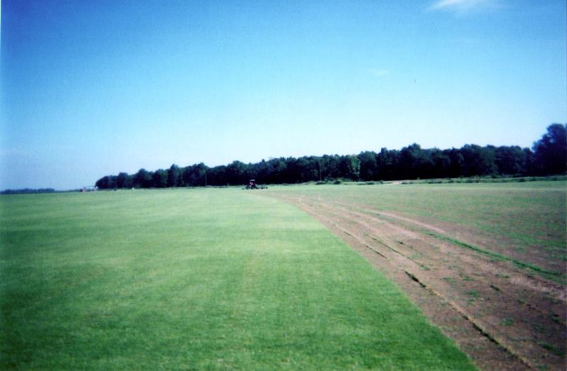 grass1010