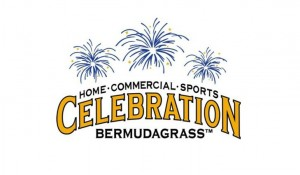 Celebration Bermuda